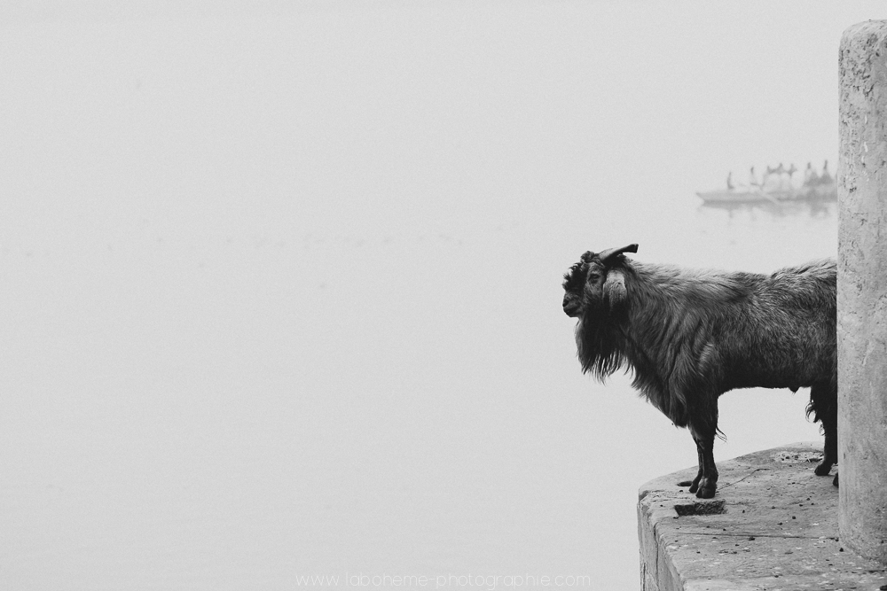 varanasi india laboheme-photographie-57