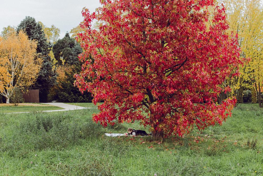 seance famille arboretum chatenay malabry laboheme-photographie-52