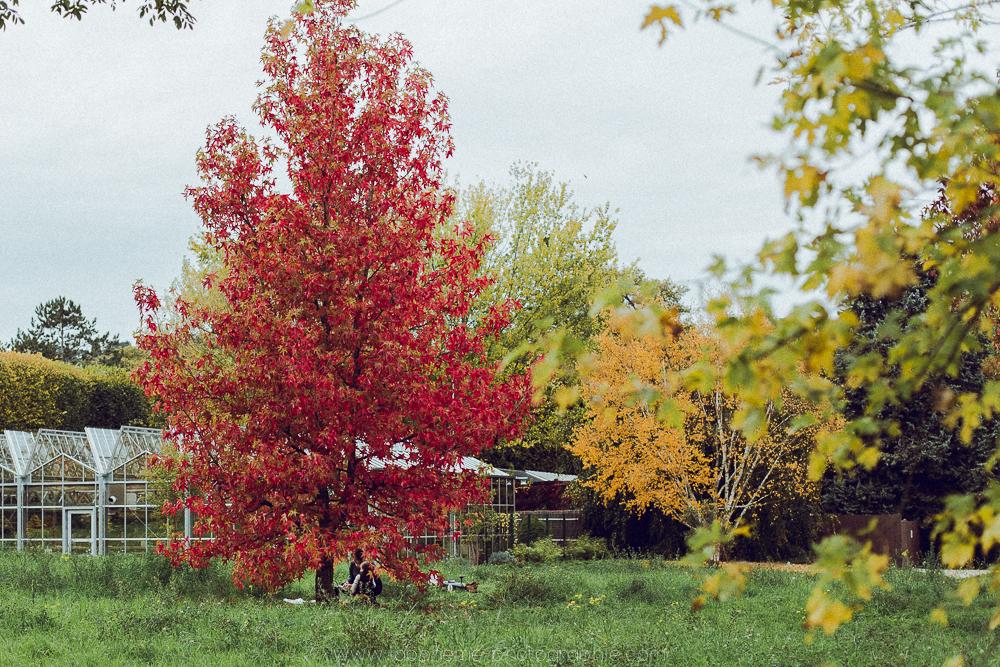 seance famille arboretum chatenay malabry laboheme-photographie-62