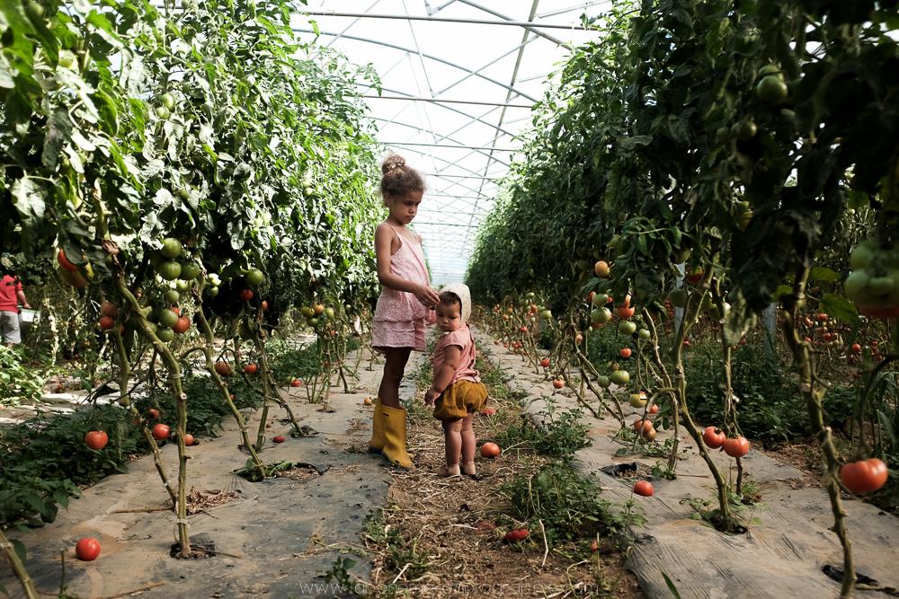 laboheme-photographie seance enfant soeurs champetre-4