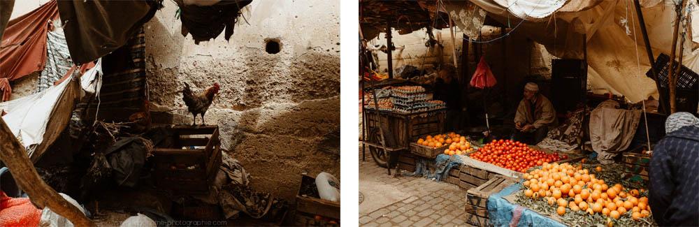 reportage maroc fes