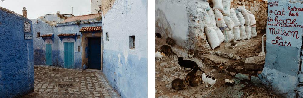 voyage marocain famille