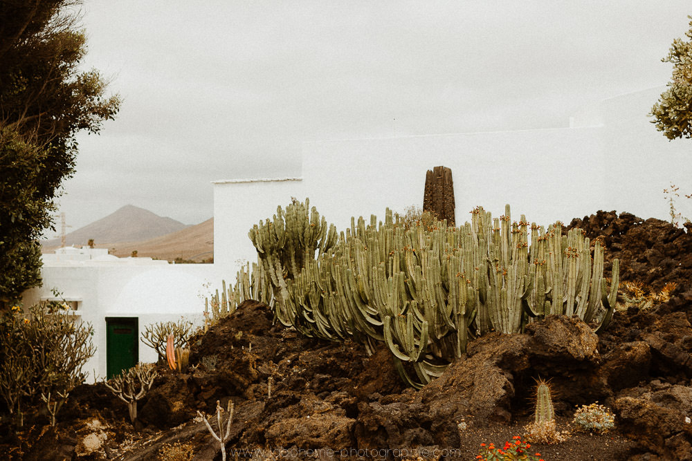photographe Lanzarote
